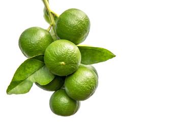 green lemon isolated
