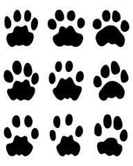 Black footprints of leopard on a white background