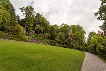 Papiers peints Jardin Jardin luxuriant, allée et palmier