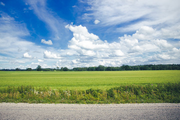 Summer sunny day asphalt road through green fields with blue cloudy sky in the background.