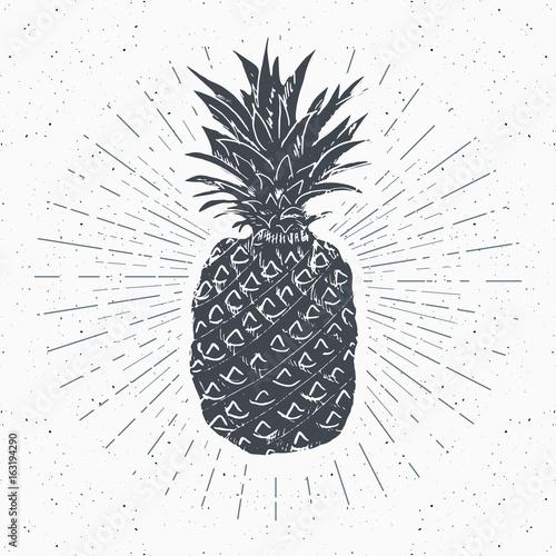 vintage label hand drawn pineapple grunge textured retro badge
