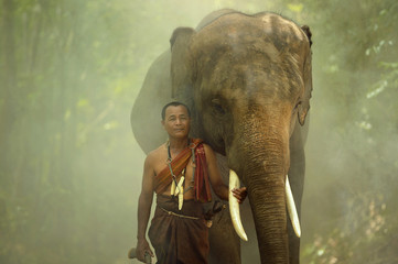 Thai Man and Young elephant in Thai culture traditional ,vintage style,Surin province Thailand