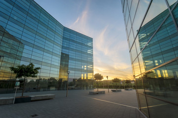 3d Business buildings in the sunset light