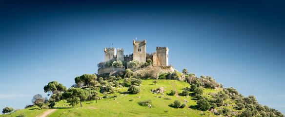 Castle on a Hill Fototapete
