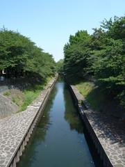 郊外の川と遊歩道