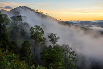 misty morning sunrise in mountain at Phang Nga,Thailand.