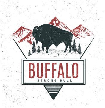 Old retro logo with bull buffalo