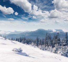 Wall Mural - Majestic winter landscape