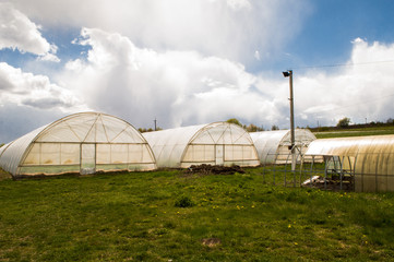 Polythene tunnel as a plastic greenhouse in an allotment with growing vegetables and fruits