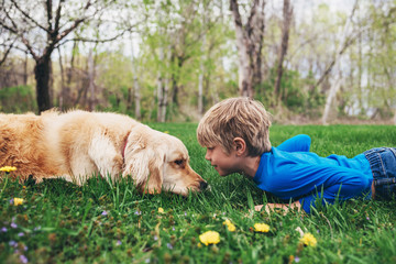 Young boy playing with golden retriever in grass