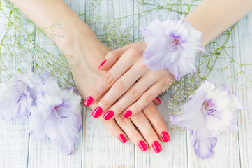 Beautiful woman hands with pink manicure and sword lily flowers, spa beauty treatment