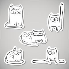Paper funny cats
