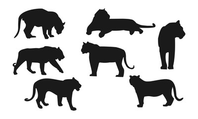 Silhouette of tiger sets