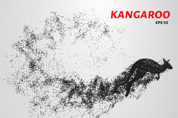 Kangaroo of particles. Kangaroo consists of small circles and dots. Vector illustration.