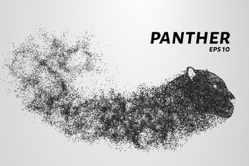 Panther of particles. Panther's head consist of circles and dots. Vector illustration.