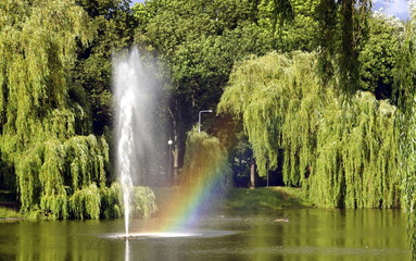 Fototapeta fontanna w parku