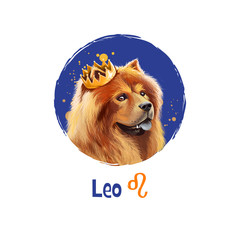 Digital art illustration of astrological sign Leo. 2018 year of dog. Fifth of twelve zodiac signs. Horoscope fire element. Logo sign with lion-like dog. Graphic design clipart for web, print. Add text