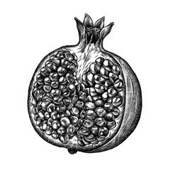Engrave isolated pomegranate hand drawn graphic illustration