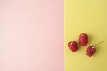 Three ripe raspberries on a pastel yellow-green background..