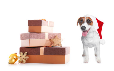 Cute Jack Russel Terrier in red hat and gift boxes isolated on white