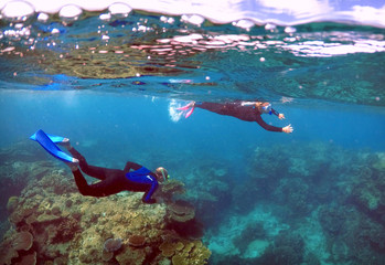 Tourists snorkel in an area called the 'Coral Gardens' at Lady Elliot Island, located north-east from the town of Bundaberg in Queensland, Australia