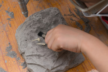 kid excavating Spinosaurus bones from a rock