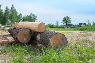 Logs for the construction of houses in the village