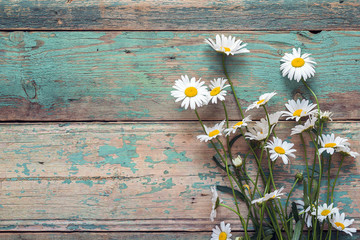 Background with daisies on old boards with shabby paint. Place for text.