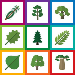 Flat Icon Natural Set Of Spruce Leaves, Decoration Tree, Park And Other Vector Objects. Also Includes Alder, Leaves, Forest Elements.