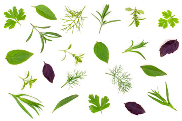 Fresh spices and herbs isolated on white background. Dill parsley basil thyme tarragon. Top view