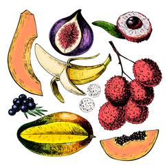 Vector hand drawn exotic fruits. Engraved smoothie bowl ingredients. Colored icon set. Tropical sweet food. Lychee, fig, mango, pitaya, banana, acai.