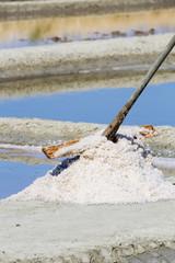Récolte du sel à Ars en Ré