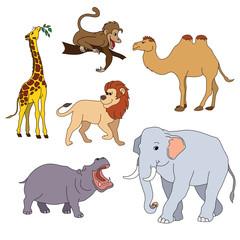 Set of various cute animals, safari animals. Vector illustration isolated on white