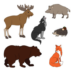 Set of various cute animals, forest animals. Wolf, fox, bear, wild boar, moose, hedgehog. Vector illustration isolated on white