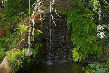 a small waterfall, the water flows into a pond with fish, on the ropes hanging lamps