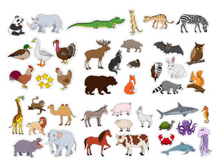 Big animals set, illustration with animals collection isolated on white background