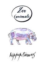 The common hippopotamus in watercolor