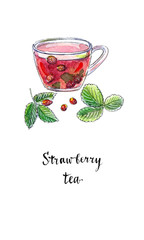 Summer fruit tea with fresh wild strawberries in glass cup, in watercolor