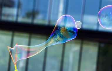 Beautiful soap bubbles fly in the city