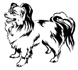 Decorative standing portrait of dog Papillon vector illustration