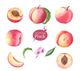 Hand-drawn watercolor illustration set of fresh ripe fruits - fresh ripe peaches. Watercolor harvest isolated on the white background