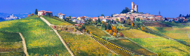 Serralunga d'alba village in Piemonte with vast vineyards. North of Italy
