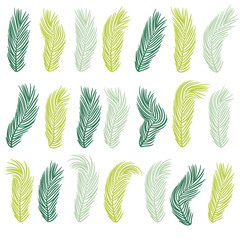 Set of  tropical palm tree leaves.  Banana leaf background. Exotic vector design. Jungle plants