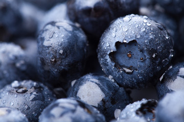 Wet fresh Blueberry background