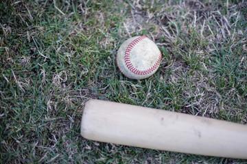 Baseball with bat