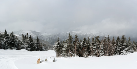 Panorama of snowy tree line at Mount Washington