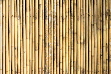 Texture of bamboo fence, nature background