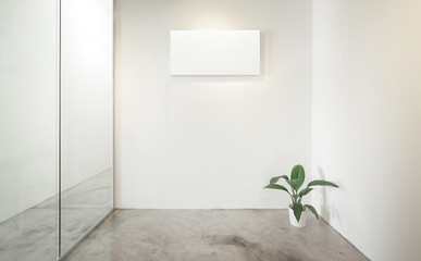 Empty office room, Glass window to the left .Green plant to the right .Loft interior style , white canvas print on the center white wall. concrete floor .