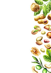 Nuts mix top view. Natural organic food. Watercolor hand-drawn  background