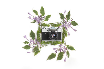Floral frame with purple hosta flowers, green leaves and succulents isolated on white background with the vintage retro camera in the middle. Flat lay, top view.
